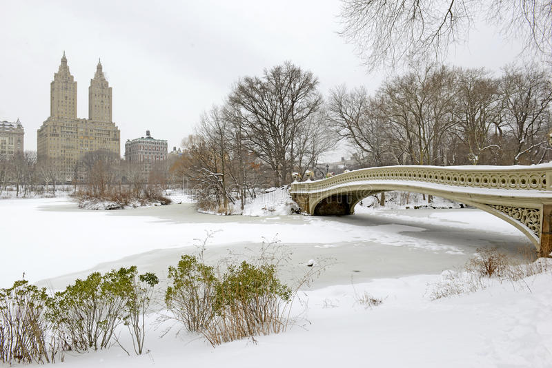 Buga bron, Central Park efter snöstormen, New York arkivbild