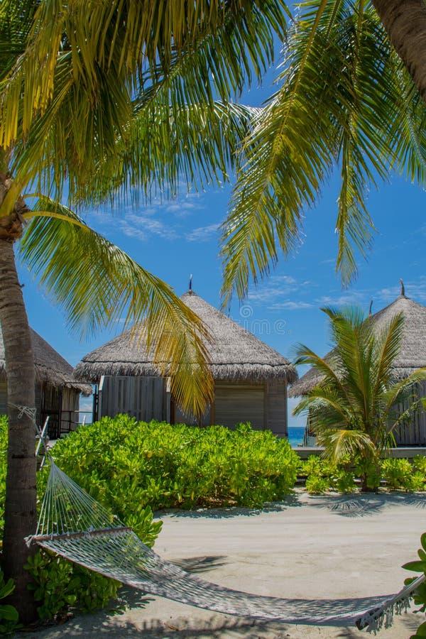 Bugalos de madeira no recurso tópico em Maldivas fotografia de stock
