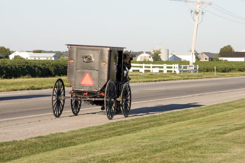 Buggy de Amish fotografia de stock