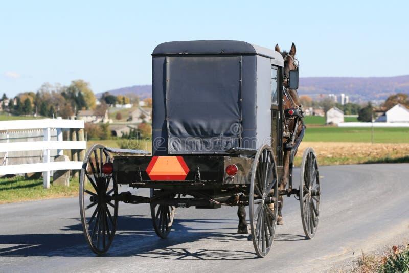 Buggy dei Amish sulla strada fotografia stock