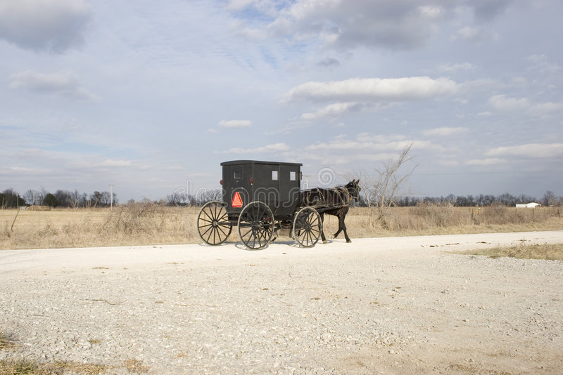 Buggy E Campagna Dei Amish Immagine Stock Libera da Diritti