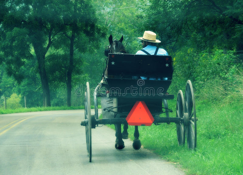 Buggy in Ohio's Amish Country. An Amish man rides a buggy in Ohio's Amish Country. He wears a light shirt on the hot summer day stock image