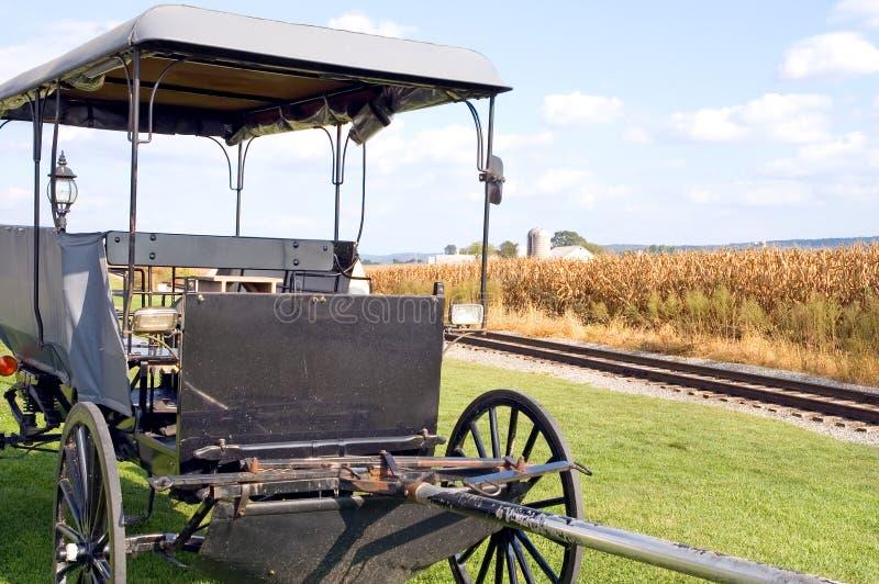 Buggy trainato da cavalli dei Amish fotografie stock libere da diritti