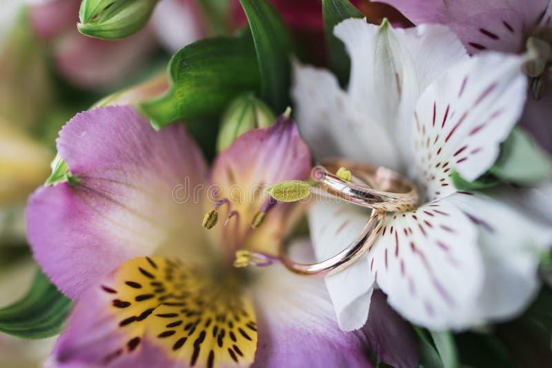 Bugia dorata delle fedi nuziali sui fiori freschi immagine stock