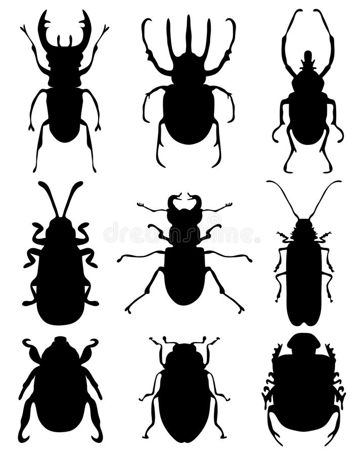 Bugs. Black silhouettes of bugs royalty free illustration