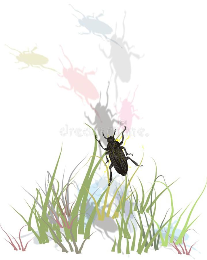 Bugs in grass royalty free stock photography