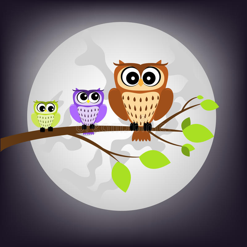 Buho de noche libre illustration