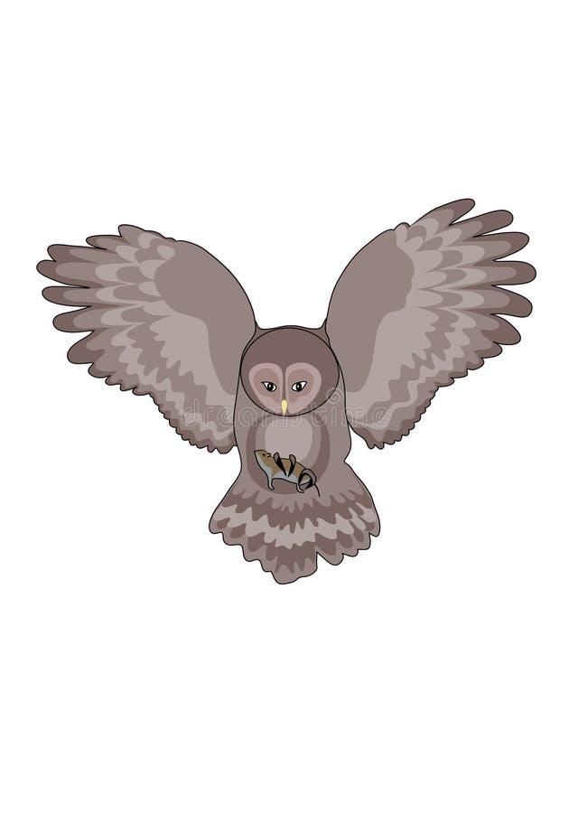 Buho. Depredador de la noche stock de ilustración