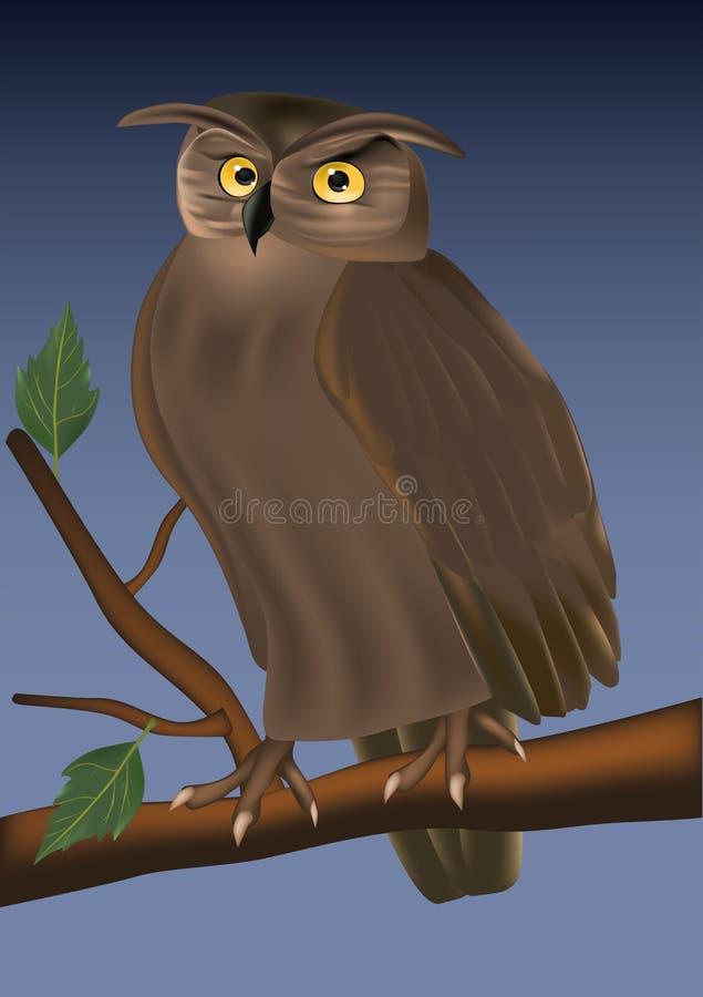 Buho joven en un árbol libre illustration
