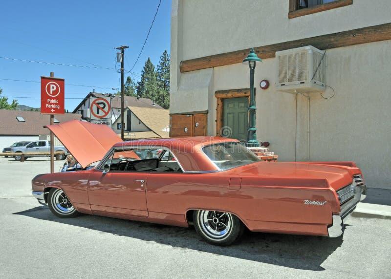 Buick-Wilde staking royalty-vrije stock afbeelding