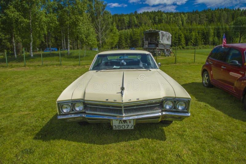buickvildkatt 1966 arkivfoto