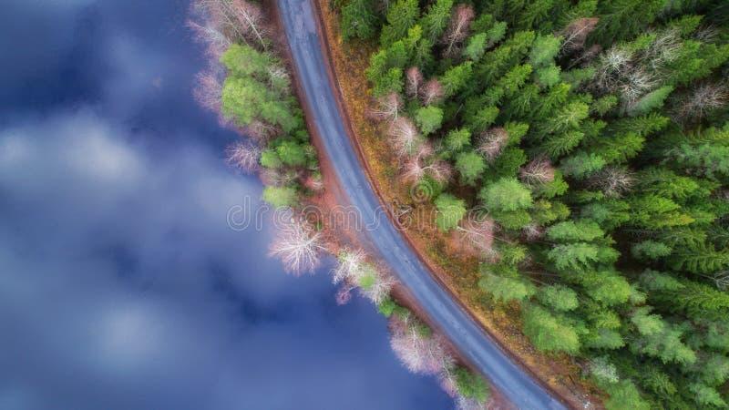Buigende weg langs mooie meer en van het sparbos Bevroren meer oppervlakte Mening van hierboven stock foto