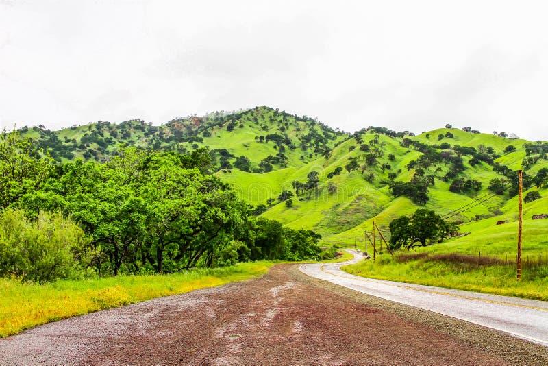 Buigende Weg omhoog de Groene Heuvels royalty-vrije stock afbeelding