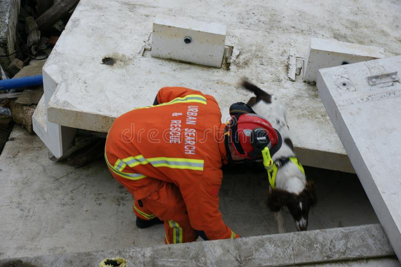 Building collapse, disaster zone. Search & rescue, USAR at building collapse royalty free stock images