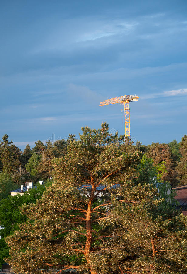 Building crane. Over forest tree tops in suburban Stockholm, Sweden stock photography
