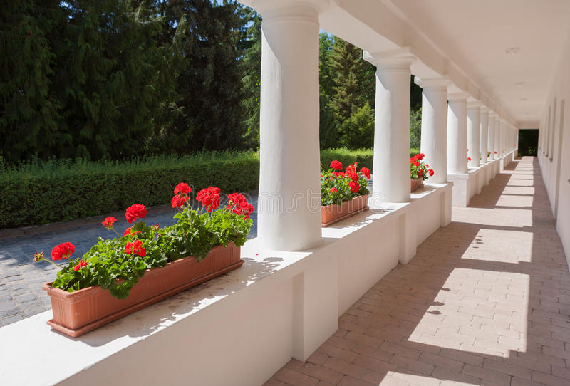 Building exterior with geraniums stock images