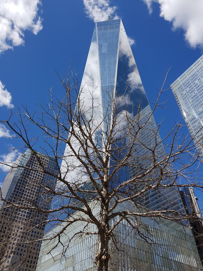 Building New York Twin Towers royalty free stock photos