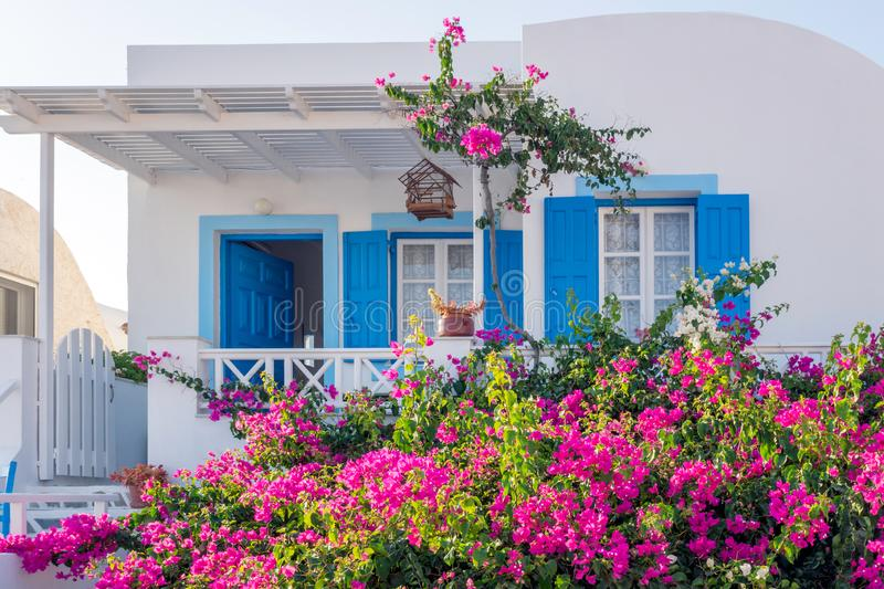 Building in Santorini with blue details and purple flowers in the garden. royalty free stock images