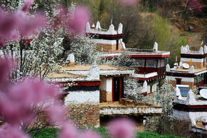 The building of tibetan stock photo