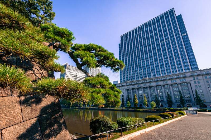 Building in Tokyo, Japan stock photography