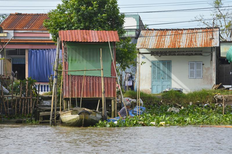 Buildings on Can Tho Waterway. Can Tho, Vietnam - December 31st 2017. A man pushes his rowing boat through the vegetation to the shore at the back of his house stock image