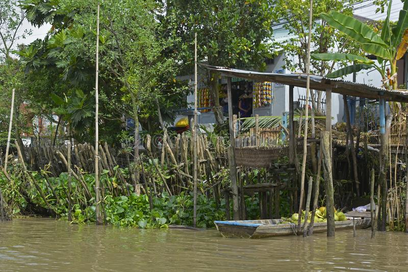 Buildings on Can Tho Waterway. Can Tho, Vietnam - December 31st 2017. An old wooden rowing boat full of fresh coconuts is parked on a waterway near Can Tho in stock photography