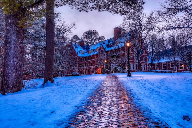 Buildings, Christmas, Cold royalty free stock photos