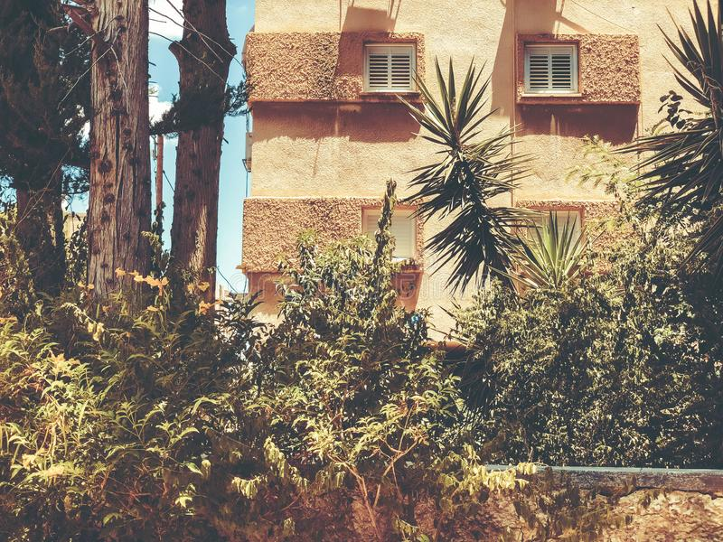 Buildings hide trees and bushes in Rishon Le Zion, Israel. Buildings hide trees and bushes in Rishon Le Zion, Israel stock photo