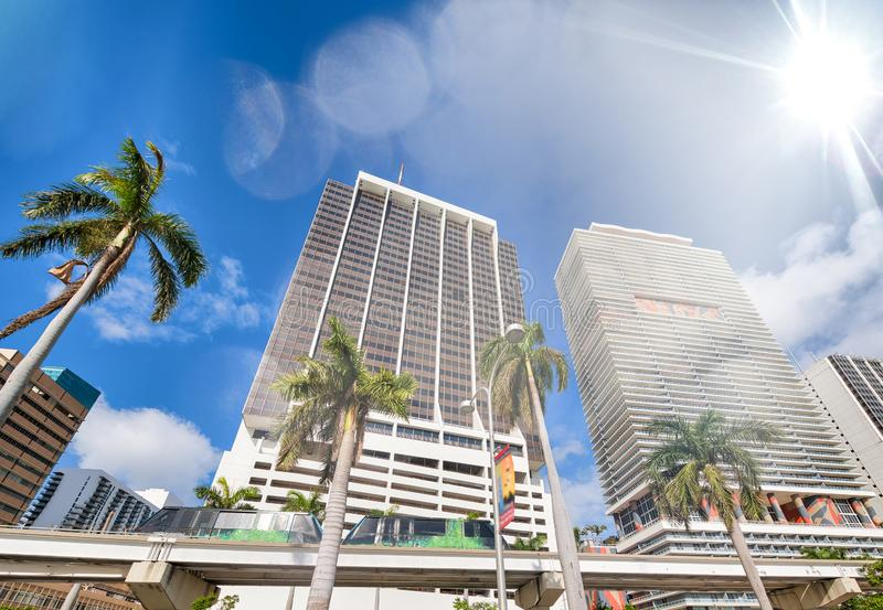 Buildings and monorail of Downtown Miami with palms on a sunny day royalty free stock images