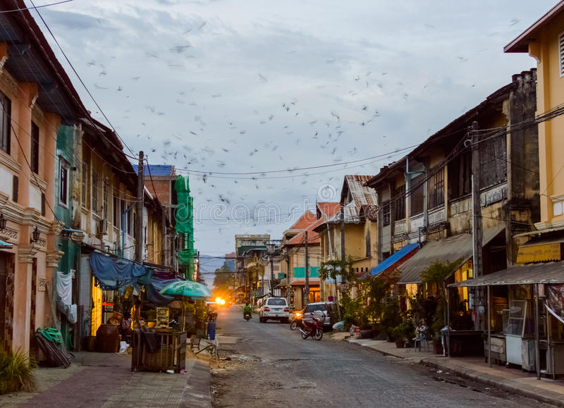 Buildings on the street of Kampot Old Town. Cambodia. Evening in the city. Many birds fly fast in the sky at sunset. Street of Kampot Old Town. Cambodia royalty free stock photography