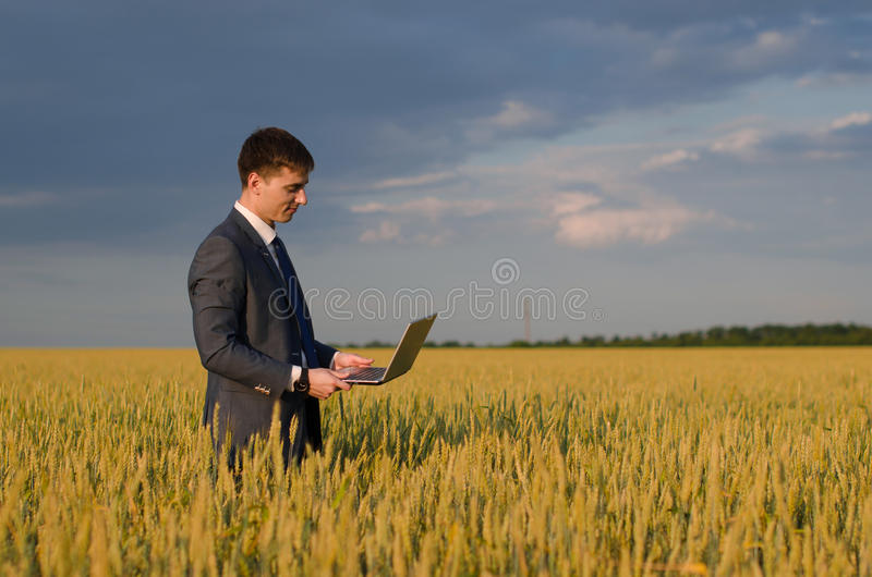 Buisnessmen в пшеничном поле стоковые фотографии rf