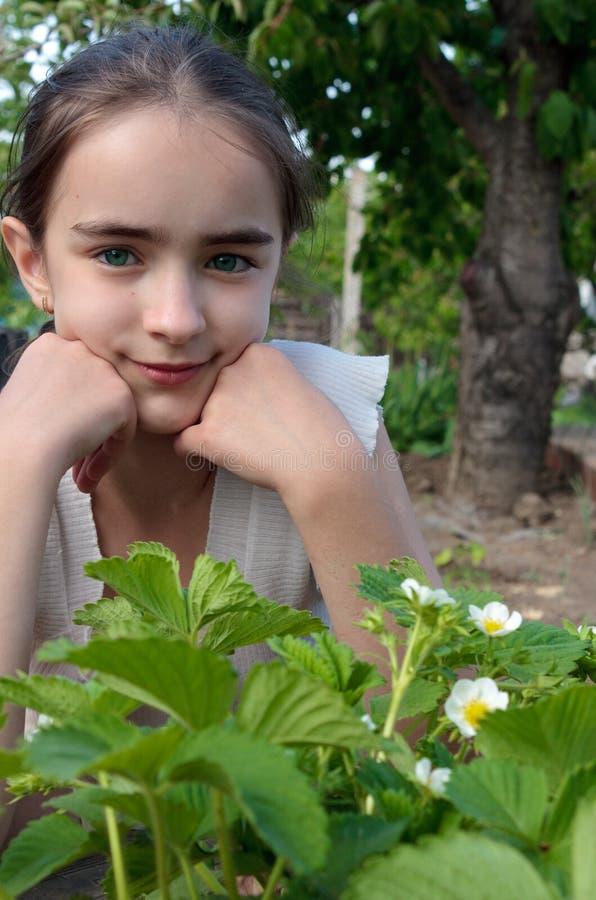 Buisson de fille et de fraise au jardin image stock