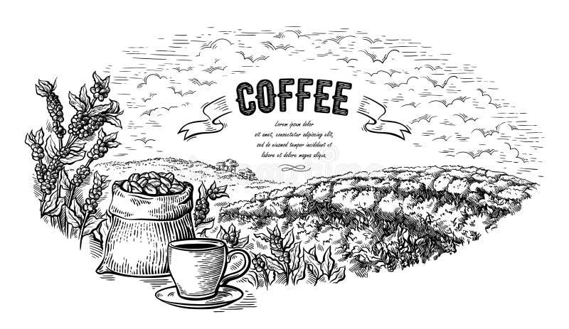 Buisson et tasse de sac de paysage de plantation de café dans le vecteur tiré par la main de style graphique illustration libre de droits