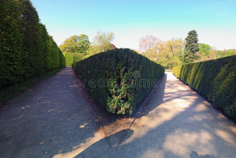 Buissons et arbres parfaits deux manières divergent dans différentes directions Jardin de château de Cesky Krumlov au ressort Rép photographie stock libre de droits
