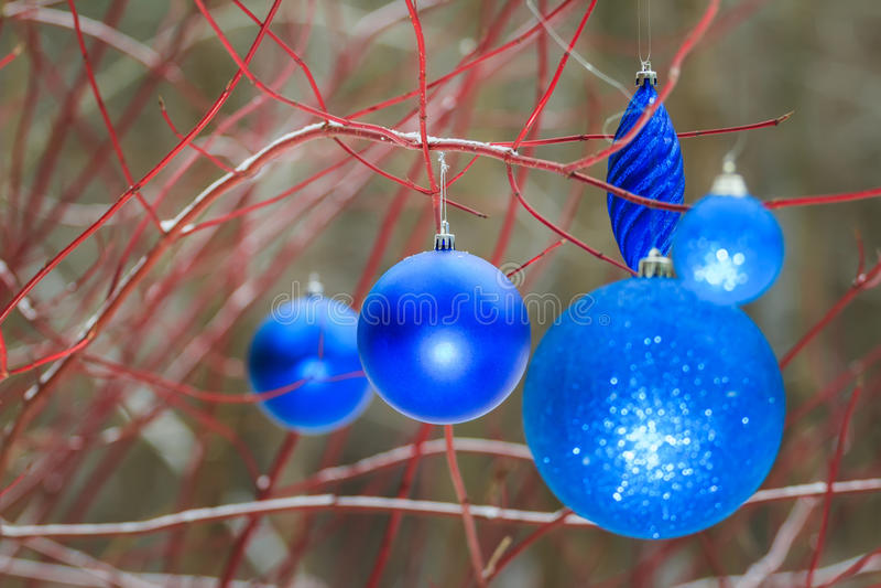 Buiten de snuisterijornamenten die van de Kerstmis decoratieve azuurblauwe fonkeling op boom rode takken hangen stock foto's