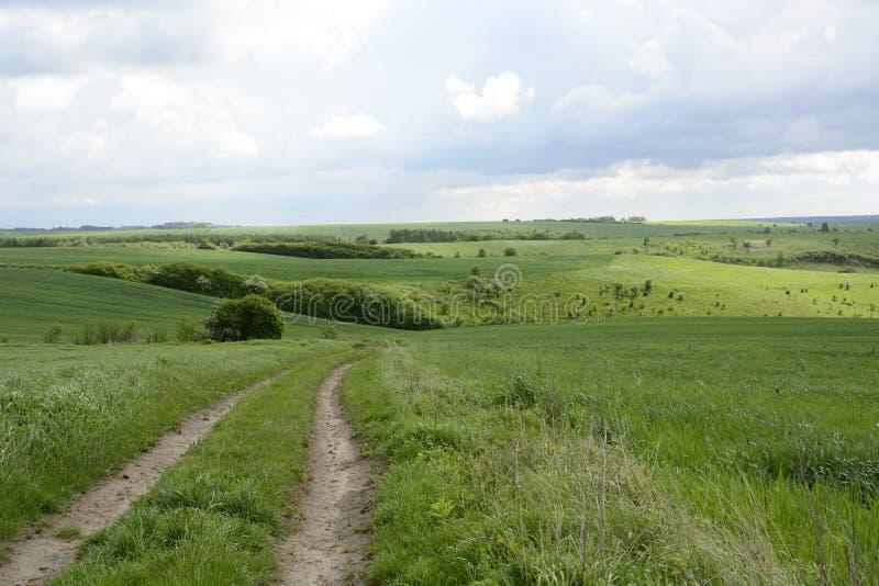 Buiten de stad - landelijk landschap - een gebied stock afbeeldingen
