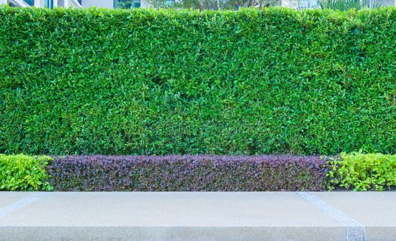 Buitendecoratie van tuin stock afbeelding