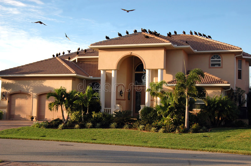 Buitres en la casa (ejecución de una hipoteca) fotos de archivo