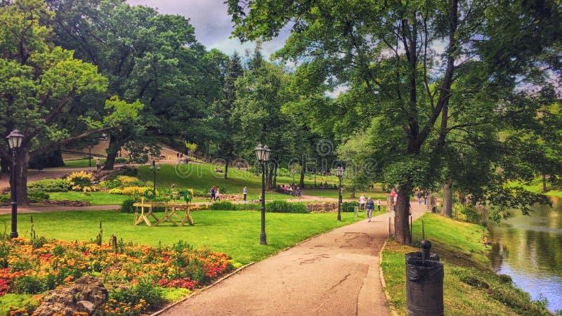 Bujny zieleni park fotografia stock