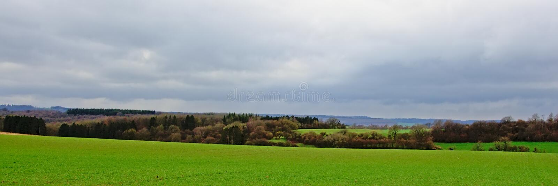 Bujny zieleni pola, wzgórza i lasy Ardennes na mglistym chmurnym dniu, obrazy royalty free