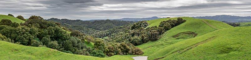 Bujny zimy Zielona panorama przy Briones regionalności parkiem obraz stock