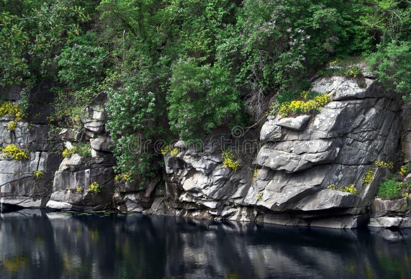 Buk kanjon i Ukraina i tidig vår royaltyfria foton
