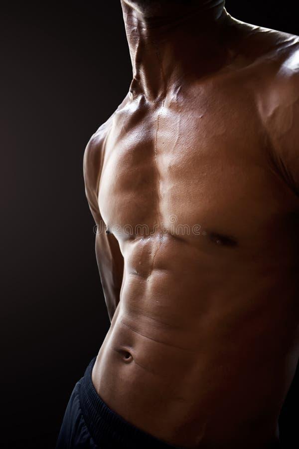 Buk- muskler för man royaltyfri foto