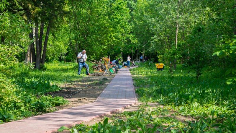 Bukarest, Rumänien - 4. Mai 2019: Leute, die an der Instandhaltung des Blumenbeets im Park am botanischen Garten in Bukarest arbe lizenzfreies stockfoto