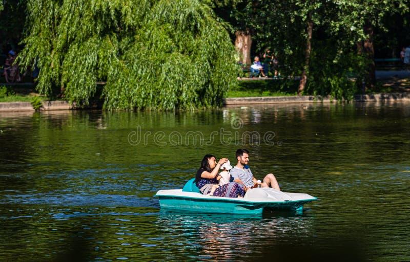 Bukarest, Rum?nien - 2019 Familie, die auf Tretboot am heißen sonnigen Tag im Cismigiu Gardens See sich entspannt lizenzfreie stockfotos