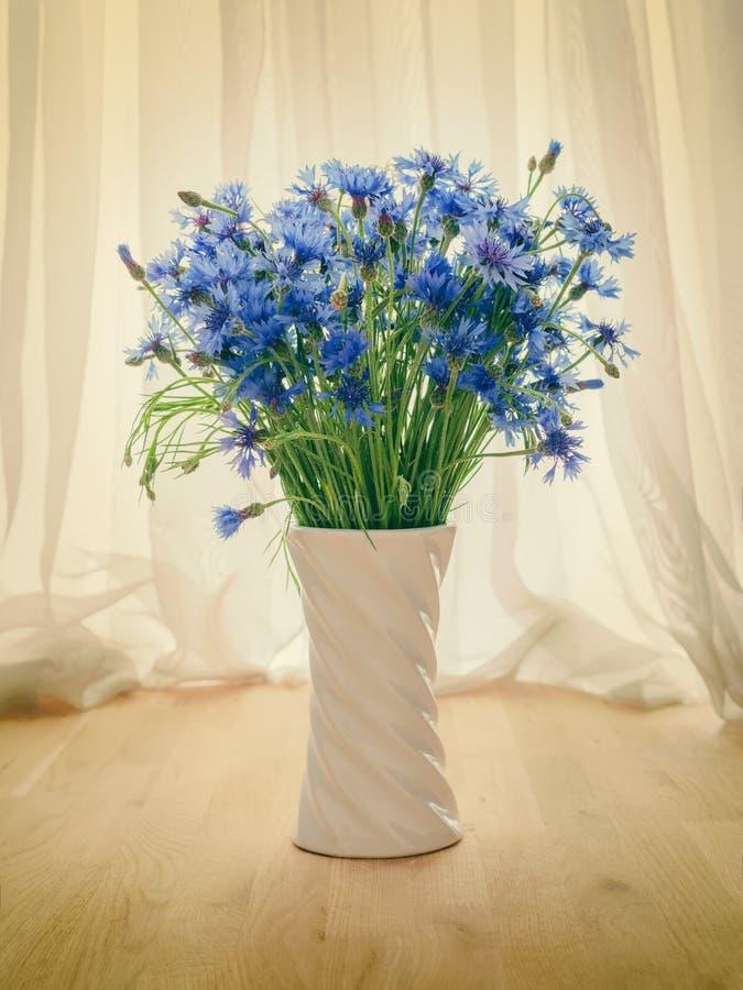 Bukett av blåklinter i en vas på tabellen across från fönster arkivbilder