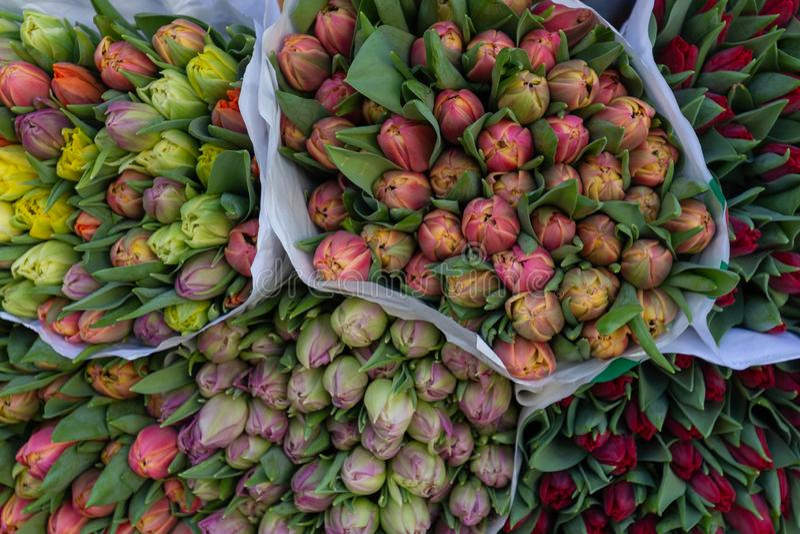 Bukett av blommor som väntar på folk royaltyfri fotografi