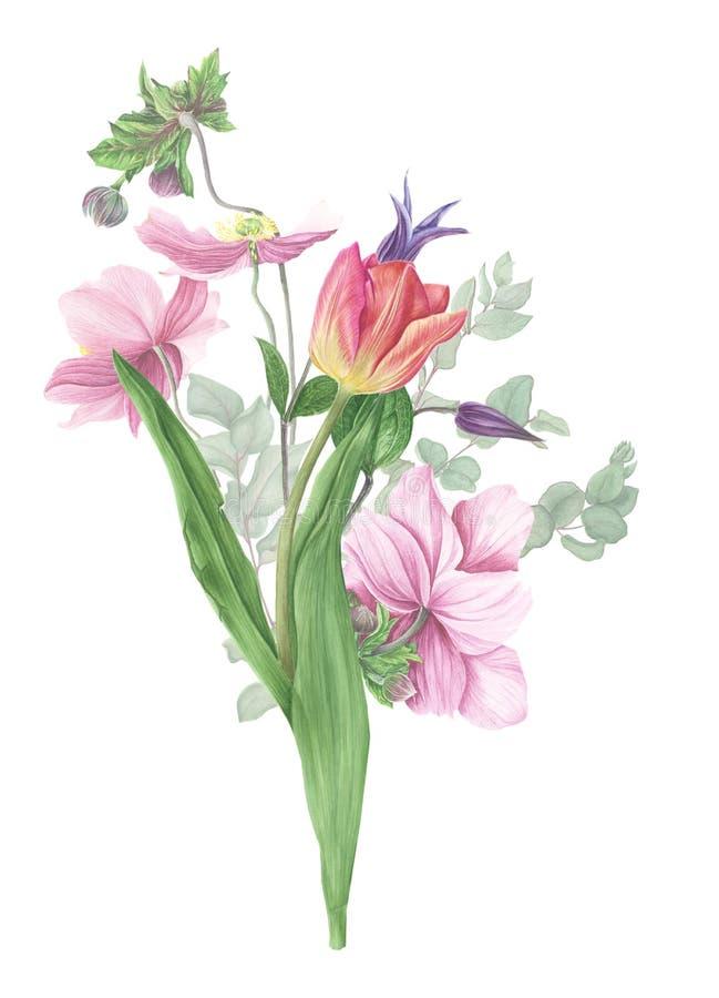 Bukett av blommor, vattenfärgmålning på vit bakgrund vektor illustrationer