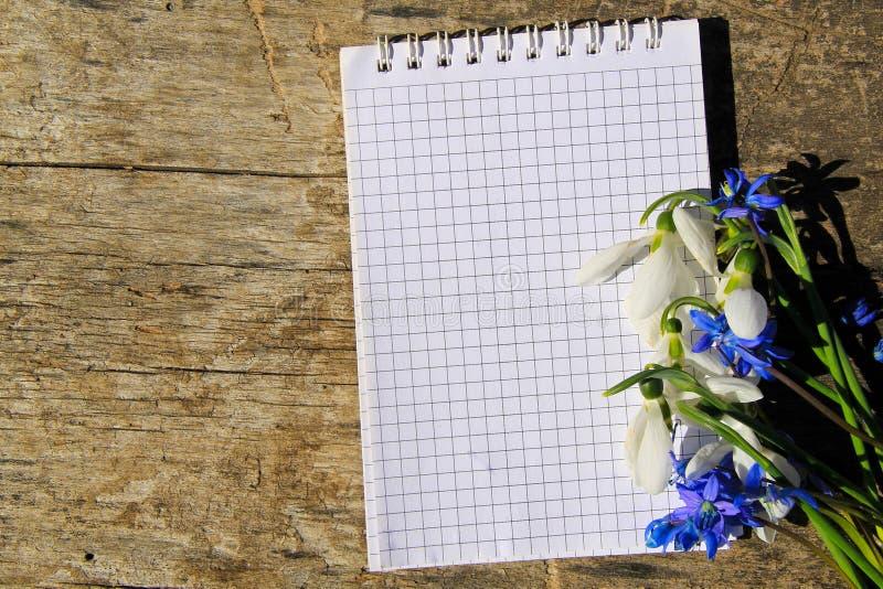 Bukett av den vårblommor och notepaden på träbakgrund royaltyfria bilder