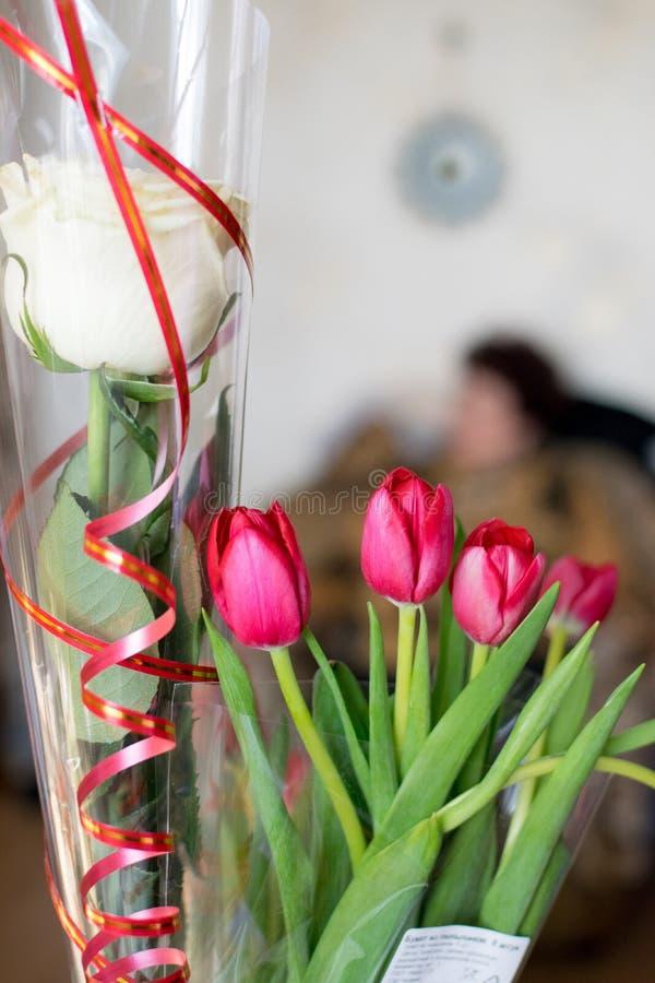 Bukett av den vita rosen och den röda tulpan på berömcloseupen royaltyfria bilder